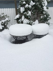 Erie City Proper Snowfall